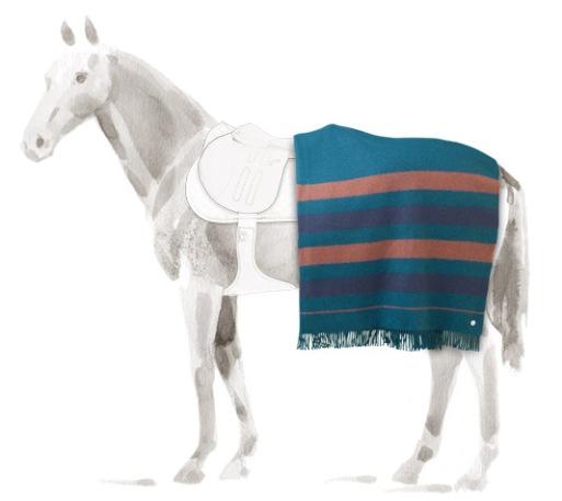 Hermes Horse Blanket