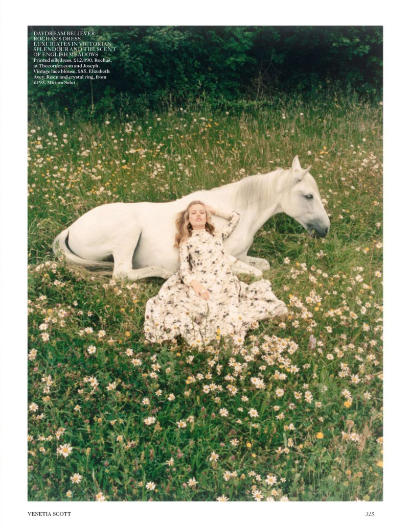 Equine Wishes and Designer Dreams