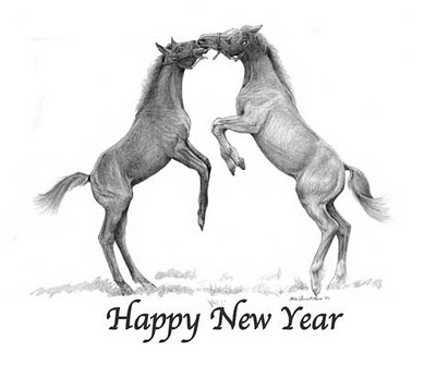 happynewyearcolts